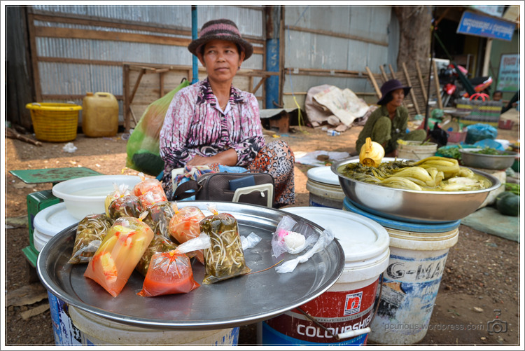 20130314-Kambodscha-8079